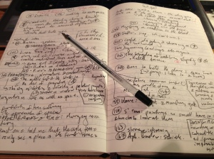 Copious notes
